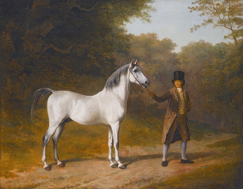 Art Prints of Wellesley Arabian with Groom in a Landscape by Jacques-Laurent Agasse