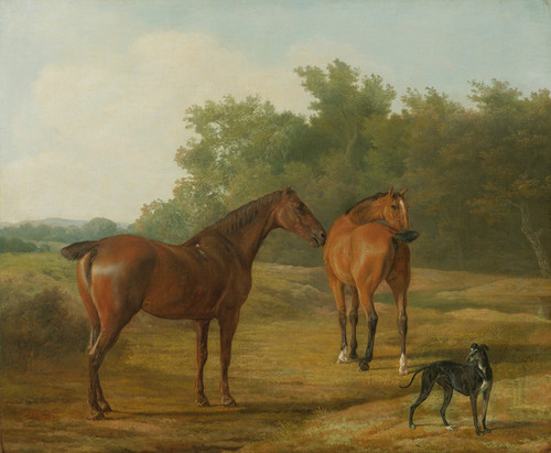 Art Prints of Two Horses and a Greyhound in a Landscape by Jacques-Laurent Agasse