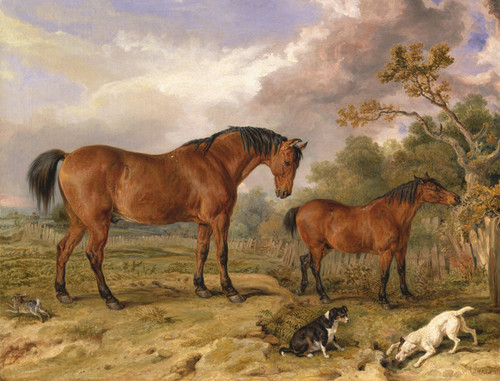 Art Prints of Portrait of Reformer, Blucher, Tory and Crib by James Ward