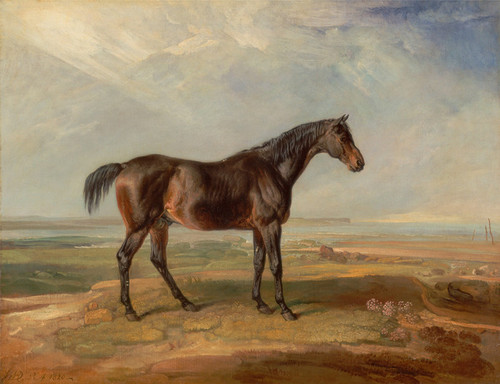 Art Prints of Dr. Syntax, a Bay Racehorse by James Ward