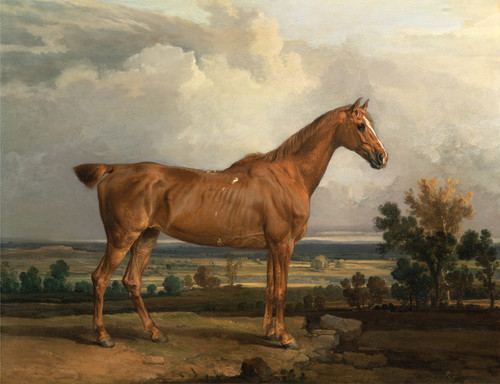 Art Prints of Hunter in a Landscape by James Ward