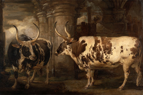 Art Prints of Portraits of Two Extraordinary Oxen by James Ward
