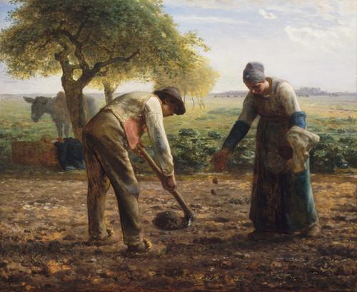 Art Prints of Potato Planters by Jean-Francois Millet