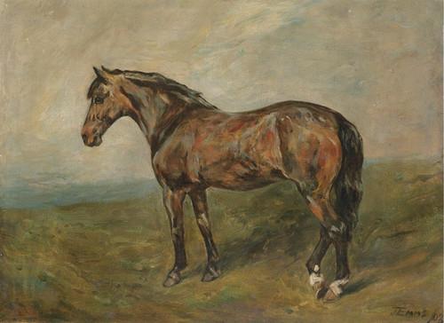 Art Prints of A Bay Hunter by John Emms