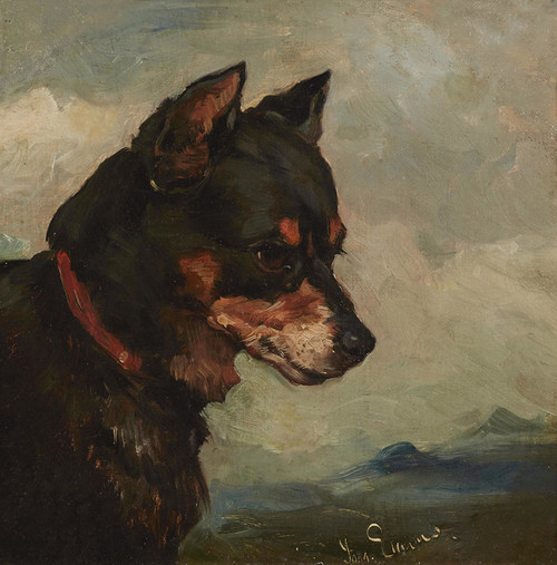 Art Prints of Head of a Terrier by John Emms