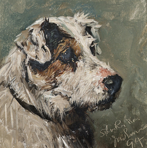 Art Prints of Study of a Terrier by John Emms