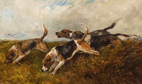 Art Prints of Hounds on the Scent by John Emms