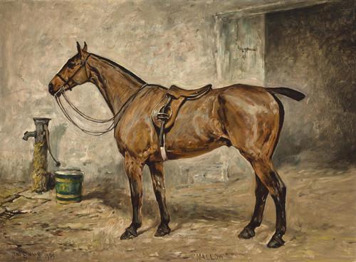 Art Prints of Mallow by John Emms