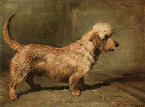 Art Prints of Portrait of the Dandie Dinmont Champion Edenside by John Emms