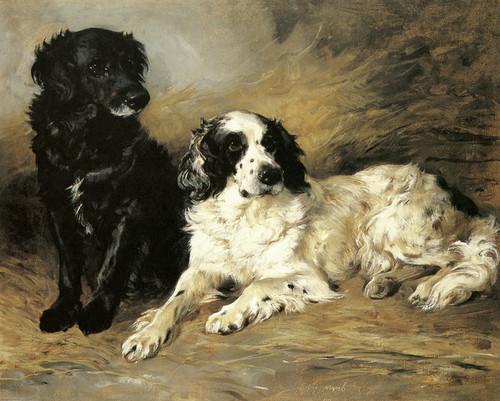 Art Prints of Retriever and Field Spaniel by John Emms