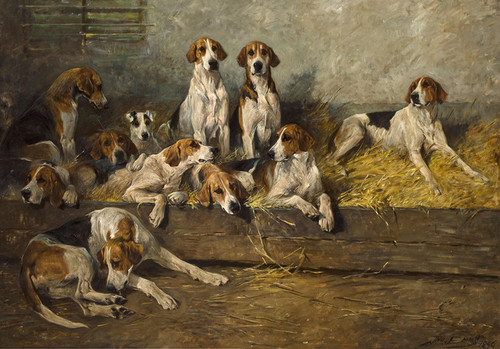 Art Prints of The Bitchpack of the Meath, Foxhounds by John Emms