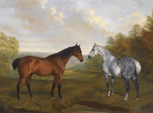 Art Prints of A Chestnut Hunter and a Grey Hunter in a Landscape by John Ferneley