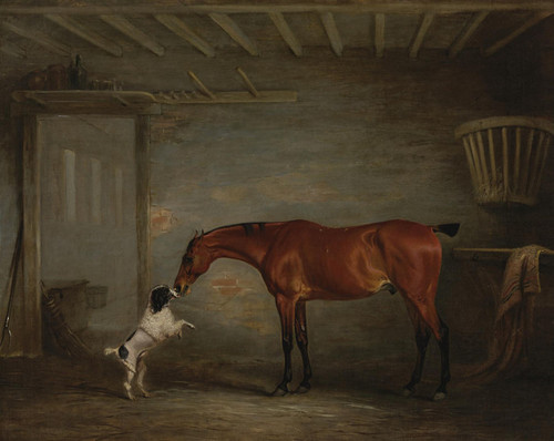 Art Prints of Hunter with Poodle by John Ferneley