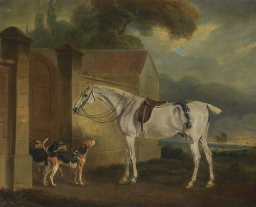 Art Prints of Lord Lonsdale's Grey Hunter Brass with Hounds by John Ferneley