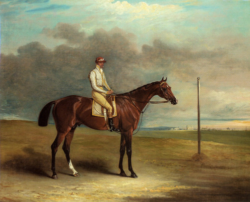 Art Prints of Lord Lowther's Spaniel with Jockey up on a Racecourse by John Ferneley