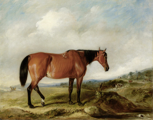 Art Prints of A Bay Hunter in a landscape, Cattle and a Town beyond by John Ferneley