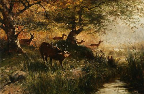 Art Prints of Hunter's Grove 2 by John Fery