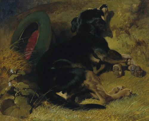 Art Prints of A Dog Sleeping Near a Hat on a Grassy Bank by John Frederick Herring