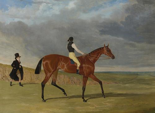 Art Prints of Bay Filly Matilda by John Frederick Herring