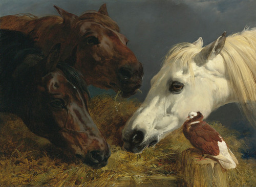 Art Prints of Farmyard Friends by John Frederick Herring