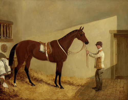 Art Prints of G. Salvins Bay Mare Alice Hawthorn by John Frederick Herring