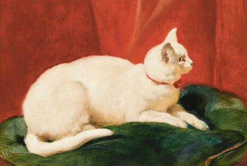Art Prints of A White Cat by John Frederick Herring