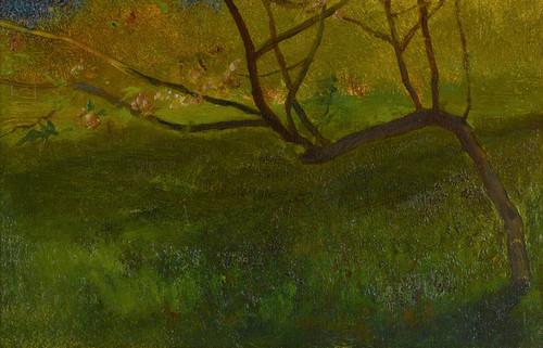 Art Prints of Study of an Apple Tree, Spring by John La Farge