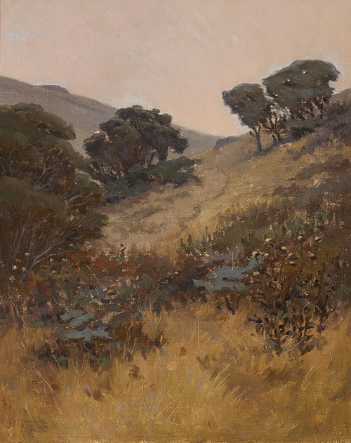 Art Prints of California Hillside by John Marshall Gamble