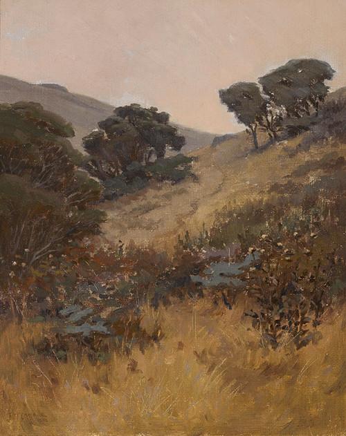 Art Prints of California Hillside by John Marshall Gamble