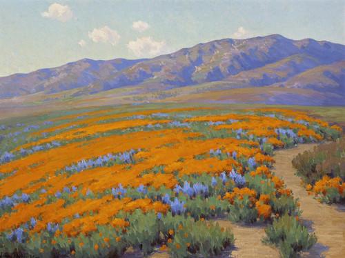 Art Prints of California Wildflowers by John Marshall Gamble