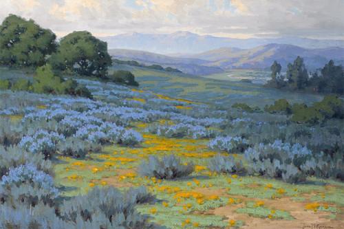 Art Prints of Santa Barbara Landscape II by John Marshall Gamble