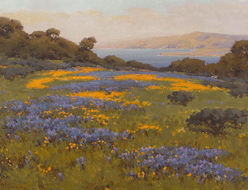 Art Prints of Poppies and Lupine by John Marshall Gamble