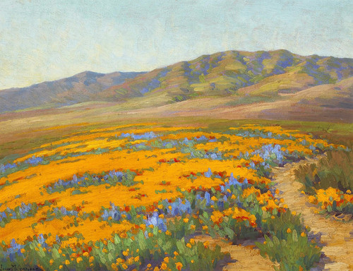 Art Prints of Spring Flowers, Antelope Valley by John Marshall Gamble