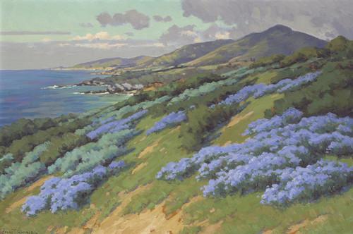 Art Prints of Wild Heliotrope near Laguna Beach by John Marshall Gamble