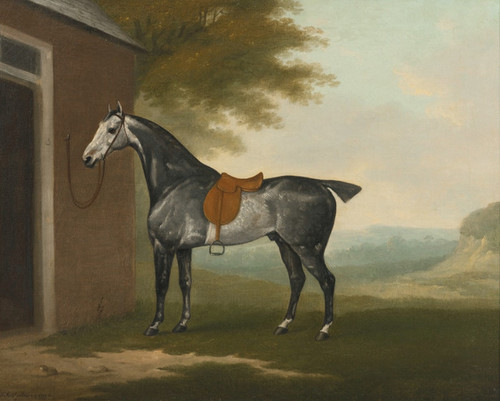 Art Prints of A Dappled Grey Hunter Tethered to a Stable by John Nost Sartorius