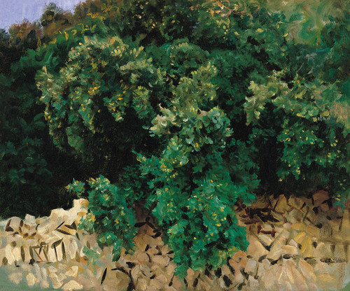 Art Prints of Carrascal, Mallorca by John Singer Sargent
