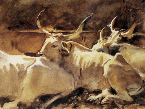 Art Prints of Oxen in Repose by John Singer Sargent