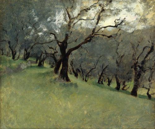 Art Prints of Olive Trees by John Singer Sargent