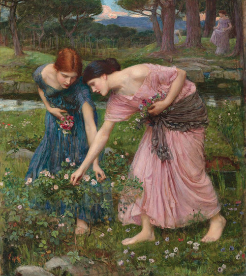 Art Prints of Gather ye Rosebuds by John William Waterhouse
