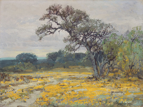 Art Prints of Coreopsis by Julian Onderdonk