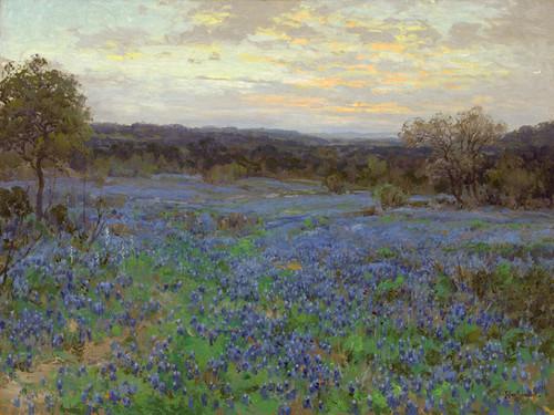 Art Prints of Field of Bluebonnets at Sunset by Julian Onderdonk