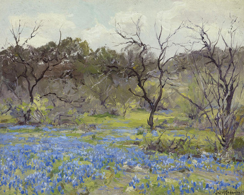 Art Prints of Early Spring Bluebonnets and Mesquite by Julian Onderdonk