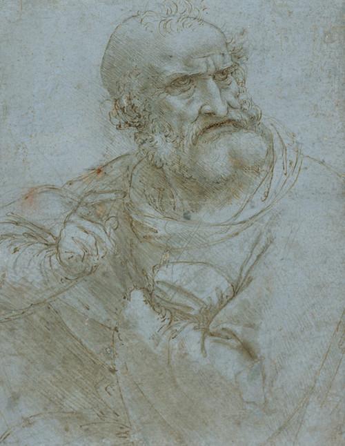 Art Prints of Half Length Figure of an Apostle 1493-1495 by Leonardo da Vinci