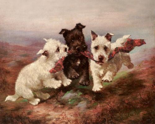Art Prints of A Highland Fling by Lilian Cheviot