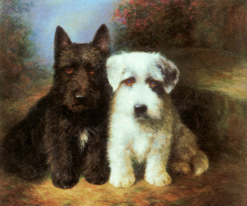 Art Prints of A Scottish Terrier and a Sealyham Terrier by Lilian Cheviot