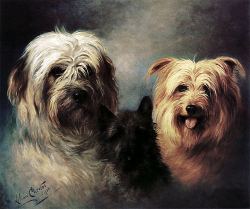 Art Prints of A Tibetan, a Cairn and a Silky Terrier by Lilian Cheviot