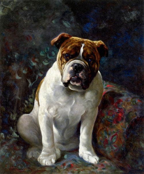 Art Prints of Doodles, Study of a Bulldog by Lilian Cheviot
