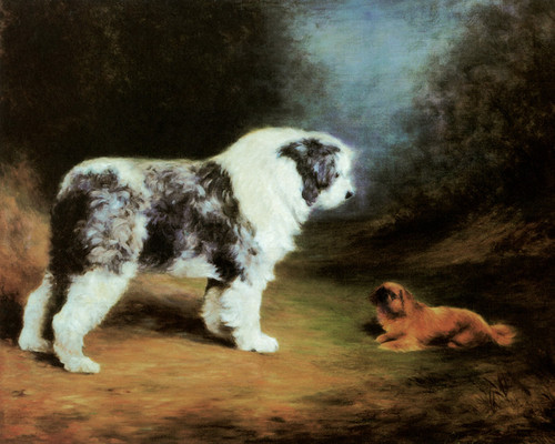 Art Prints of Old English Sheepdog and Pekingese by Lilian Cheviot