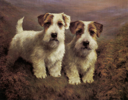 Art Prints of Sealyham Terriers by Lilian Cheviot