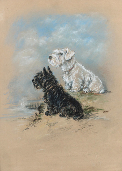 Art Prints of Friends, a Sealyham and a Scottie by the Sea by Lucy Dawson